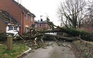 A tree falls during a storm and causes damage to a house.